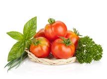 Ripe tomatoes, basil, parsley green onion Stock Photo