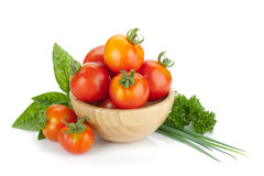 Ripe tomatoes, basil and parsley Royalty Free Stock Photo