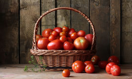 Ripe tomatoes in a basket on table, still life in rustic style. Stock Images