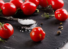 Ripe  tomatoes on a  black background Royalty Free Stock Photos
