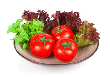 Ripe tomatoes in bowl and basil Royalty Free Stock Photos