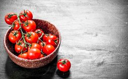 Ripe tomatoes in a bowl stock image