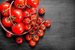 Ripe tomatoes in a bowl stock photos