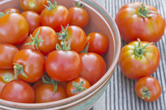 Ripe tomatoes in a bowl. On the table Royalty Free Stock Image