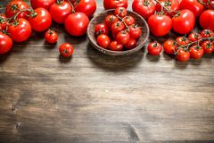 Ripe tomatoes in a bowl royalty free stock photos