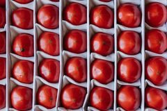 Ripe tomatoes in a box, top view.  Royalty Free Stock Images