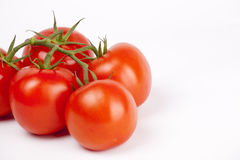 Ripe tomatoes on a branch on white Stock Photos