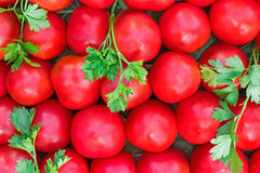 Ripe tomatoes of bright red color of the small size. Royalty Free Stock Photos
