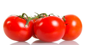 Ripe tomatoes closeup isolated on white. Stock Photography