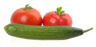 Ripe tomatoes with cucumber Royalty Free Stock Photo