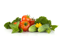 Ripe tomatoes, cucumbers, basil and parsley Royalty Free Stock Image