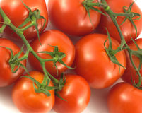 Ripe tomatoes isolated closeup Royalty Free Stock Photos