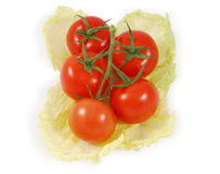 Ripe tomatoes on lettuce. Overhead view of ripe tomatoes on slice on lettuce, white background Royalty Free Stock Photography
