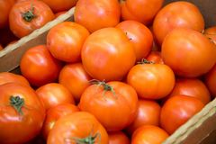 Ripe tomatoes at the market stock images
