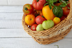 Ripe tomatoes mix in basket Royalty Free Stock Image