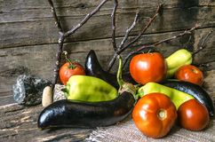 Ripe tomatoes, peppers and eggplant on of burnt boards Royalty Free Stock Image