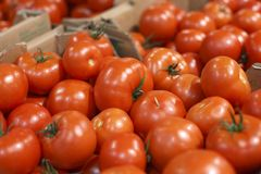 Ripe tomatoes for sale Stock Photography