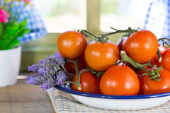 Ripe tomatoes spread Stock Images