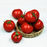 Ripe Tomatoes with Stems Stock Photo