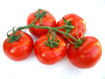 Ripe tomatoes on vine. Closeup of ripe red tomatoes on vine, isolated on white background Stock Photos