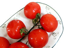 Ripe tomatoes on vine. Overhead view of ripe tomatoes on vine, white background Stock Photography