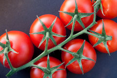 Ripe tomatoes on the vine. Close-up of some ripe tomatoes on the vine stock images