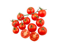 Ripe tomatoes on vine Stock Photography