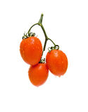Ripe tomatoes on a white background. Ripe tomatoes on white background close up Royalty Free Stock Image