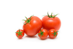 Ripe tomatoes on a white background closeup Stock Image