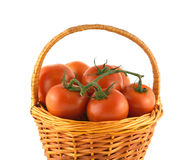 Ripe tomatoes in wicker basket isolated Royalty Free Stock Image