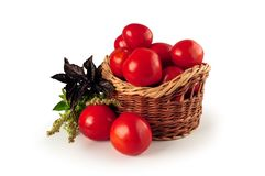 Ripe tomatoes in a wicker basket Stock Photos