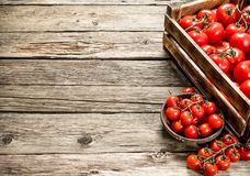Ripe tomatoes in a wooden box. On a wooden table royalty free stock photography