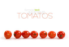 Ripe tomatos Stock Photography