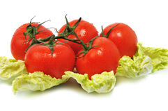Ripe tomatos with leaves cabbage Royalty Free Stock Photo