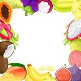 Ripe tropical fruits and slices realistic set with isolated images of mango pitaya papaya coconut and passionfruit  illustra. Tion isolated on white background Stock Photo