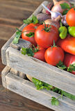 Ripe vegetables. In a wooden box Royalty Free Stock Images