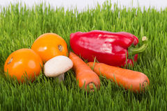 Ripe vegetables on green grass Royalty Free Stock Images