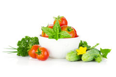 Ripe vegetables and herbs Stock Images