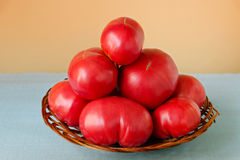 Ripe very large tomatoes in a wooden basket on a colored background Royalty Free Stock Photos