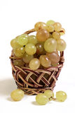 Ripe vine in a basket. Royalty Free Stock Photography