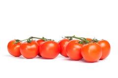 Vine Tomatoes Stock Photos