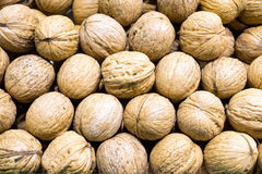 Ripe walnuts Royalty Free Stock Images