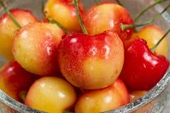 Ripe Washington State Rainier cherries in glass bowl. Close up fresh Rainier cherries, focus on cherry in front, in glass bowl. Washington State produce during Royalty Free Stock Photos