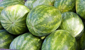 Ripe Watermellons Stock Photo