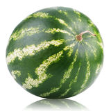 Ripe watermelon berry  on white Stock Photography