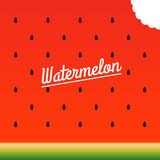 Ripe watermelon bitten piece pattern. Vector illustration. Royalty Free Stock Images