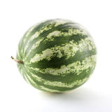 Ripe watermelon isolated. On white background Stock Images