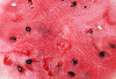 Ripe watermelon Royalty Free Stock Photography