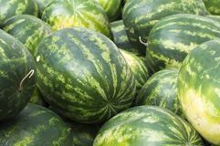 Ripe watermelons lie in the fresh air for sale. Close-up. Russia. Autumn: hot, sunny day royalty free stock photos