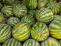 Ripe watermelons at the marketplace in Bukhara, Uzbekistan Stock Image